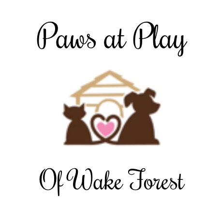 Sponsor Paws at Play